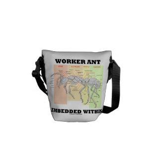 Hormiga del trabajador encajada dentro de morfolog bolsa de mensajeria