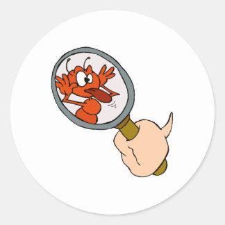 Hormiga en espejo etiquetas redondas