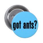 ¿hormigas conseguidas? pins