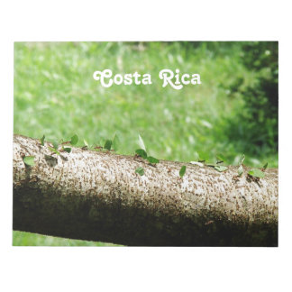 Hormigas del cortador de la hoja en Costa Rica Bloc De Notas
