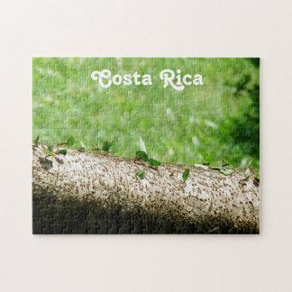 Hormigas del cortador de la hoja en Costa Rica Puzzle Con Fotos