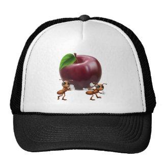 Hormigas que llevan una manzana grande gorras de camionero