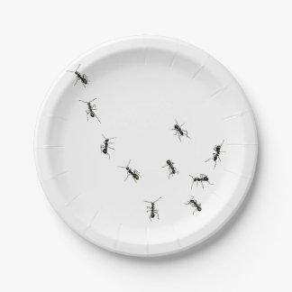 hormigas que marchan platos de papel