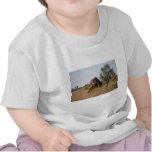 Hormigueros en el Territorio del Norte Camisetas