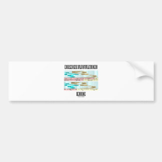 Hormone Fluctuations Inside (Menstrual Cycle) Bumper Sticker