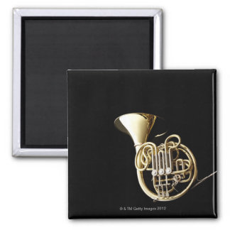Horn 2 magnet
