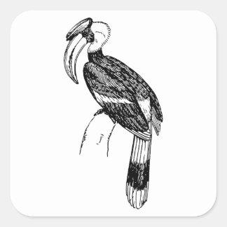 Hornbill Bird Art Sticker