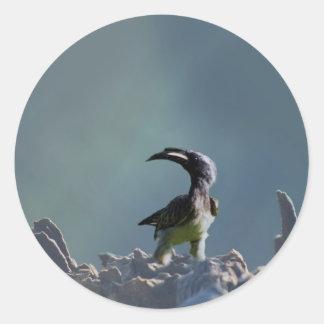 Hornbill bird Warrior spirit Classic Round Sticker