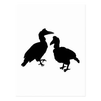 Hornbill Birds in Black. Postcard