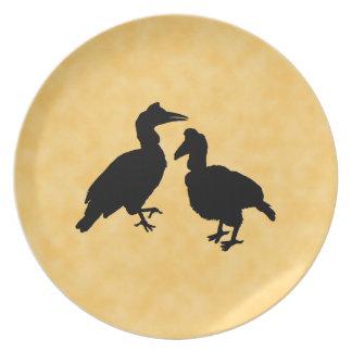 Hornbill Birds. Plate