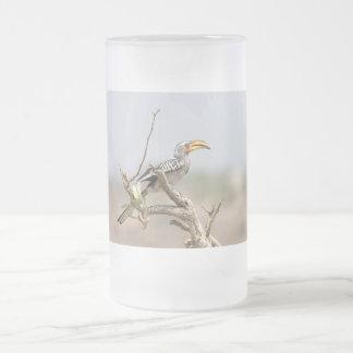 Hornbill cargado en cuenta amarillo taza de cristal