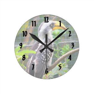 hornbill en perca en plantas verdes reloj redondo mediano