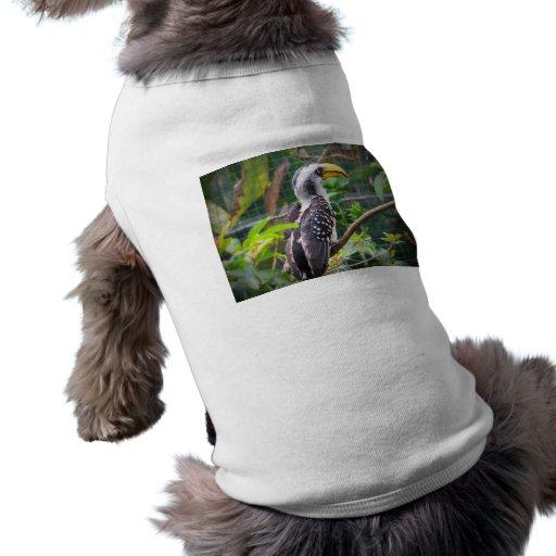 hornbill en perca en plantas verdes playera sin mangas para perro