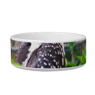hornbill on perch in green plants cat food bowl