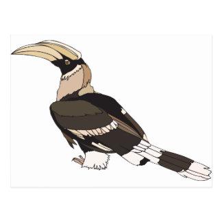 hornbill postcard