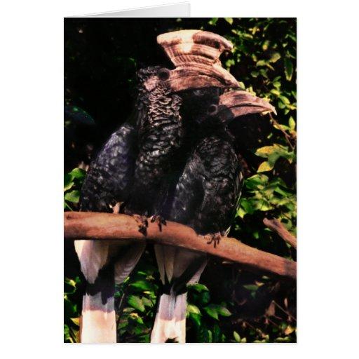 Hornbills In Love Greeting Card