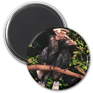 Hornbills In Love Magnet