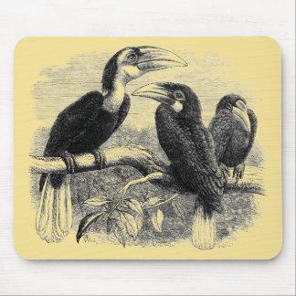 Hornbills Mouse Pads