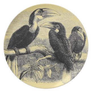Hornbills Dinner Plate