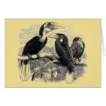 Hornbills Tarjeta De Felicitación