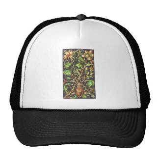 Horned Beetle in Brown Trucker Hat