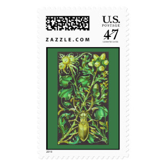 Horned Beetle in Gold and Green Vintage Print Postage Stamp