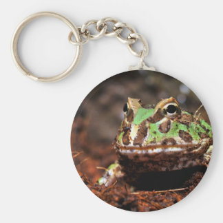 horned frog basic round button keychain