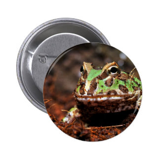 horned frog button