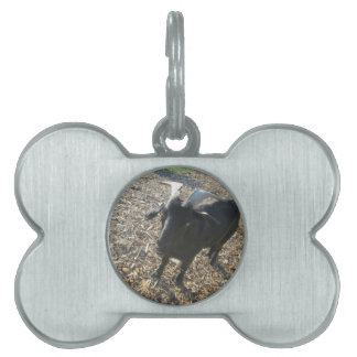 Horned Goat Pet Name Tag