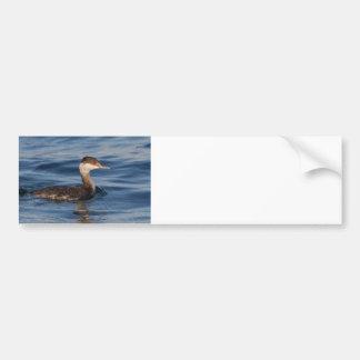 Horned Grebe Bumper Sticker