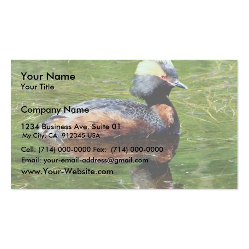 Horned Grebe Double-Sided Standard Business Cards (Pack Of 100)