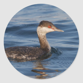 Horned Grebe Classic Round Sticker