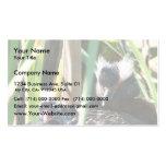 Horned Grebe Nesting Business Card