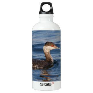 Horned Grebe Water Bottle