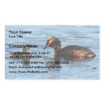 Horned Grebe with Chick Business Card