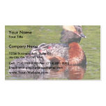 Horned Grebe with Young Business Card Template