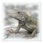 Horned Iguana Invitation