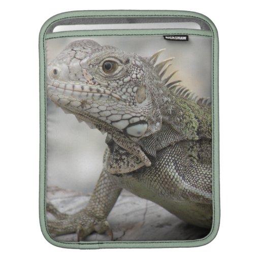 Horned Iguana iPad Sleeve