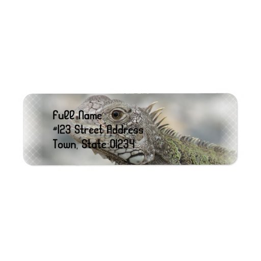 Horned Iguana Return Address Label