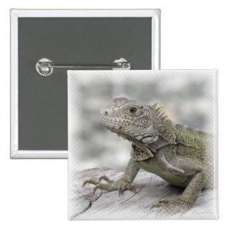 Horned Iguana Square Pin