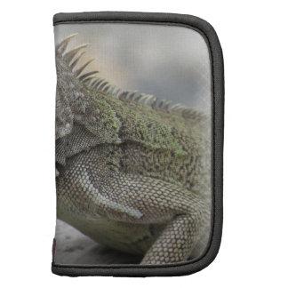 Horned Iguana Wallet Folio Planner