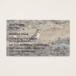 Horned Lark Business Card