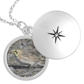 Horned Lark Round Locket Necklace