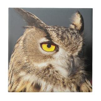 Horned Owl Ceramic Tile