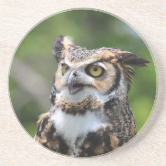 Horned Owl Coaster