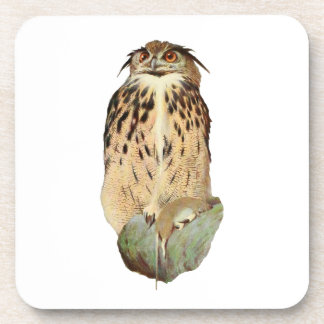 Horned Owl Coasters