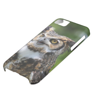 Horned Owl Cover For iPhone 5C