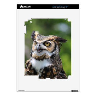 Horned Owl Decal For iPad 2