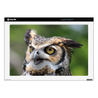 Horned Owl Decal For Laptop