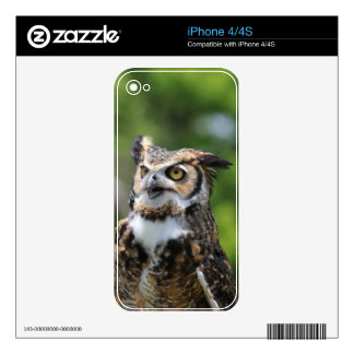 Horned Owl Decals For The iPhone 4S